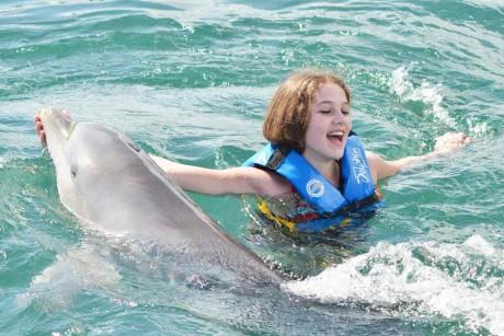 g1_dolphin2-2